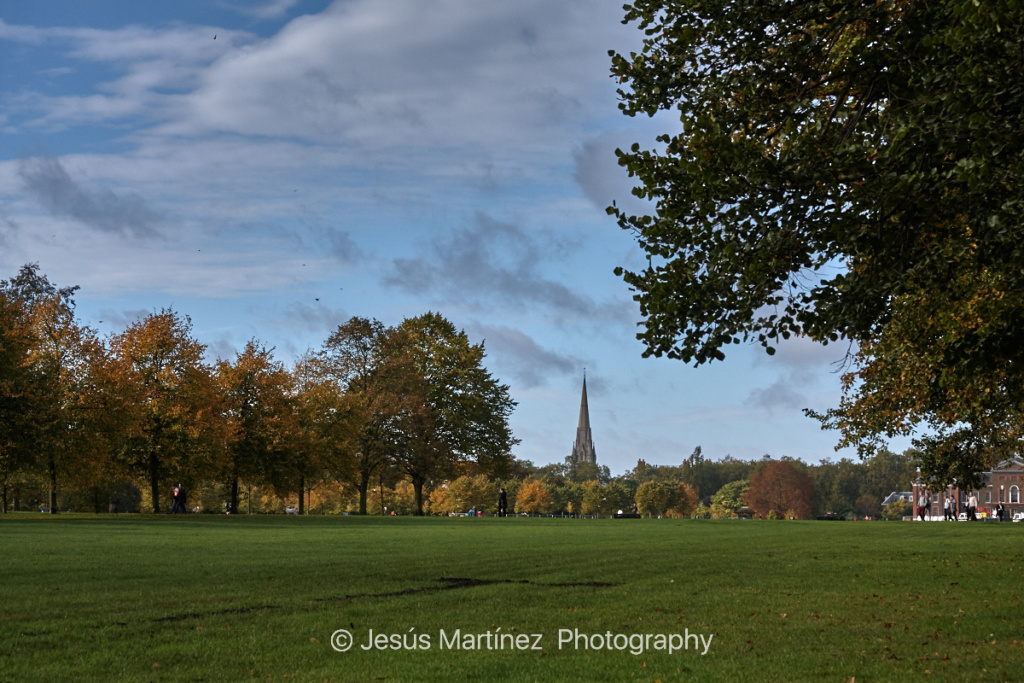 High Park in London